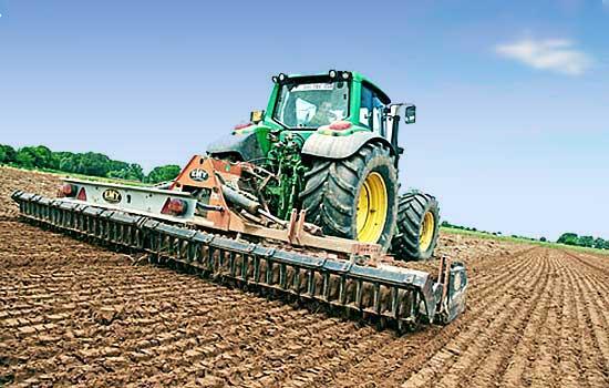 Питомники barzoy подготовка почвы 1