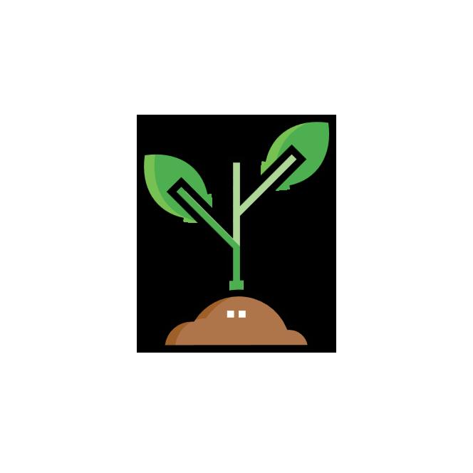 Icon o nama vrhunske sadnice